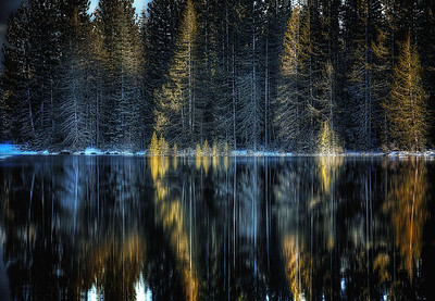 It Was Time To Spread Her WingsNyack Lake, California It seemed everywhere she looked... especially in the stillpoint of dead center... she saw the signs. It was time to spread her wings.   ©Karen Hutton - Creative Commons (CC BY-NC 3.0)