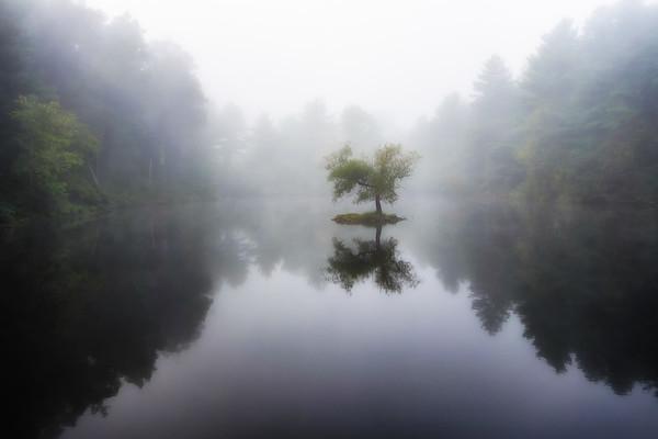 Arlie Lake