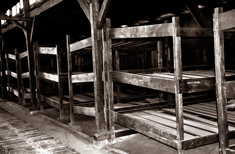 Birkenau--Wooden barrack bunks; four or five prisoners slept on each bunk