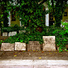 Budapest, Jewish synagogue and cemetery