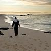 Las Bachas Beach, Isla Santa Cruz, Galapagos Islands, Ecuador
