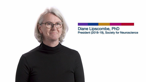 Society for Neuroscience - Meet The Researcher / Diane Lipscombe, PhD (2019)