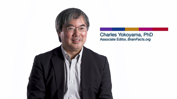 Society for Neuroscience - Meet The Researcher / Charles Yokoyama, PhD (2019)