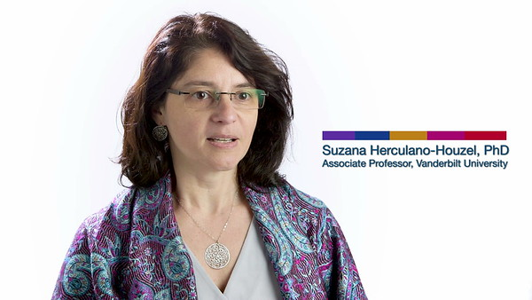 Society for Neuroscience - Counting Neurons / Suzana Herculano-Houzel, PhD (2018)