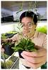 Zhixiang Chen, molecular geneticist