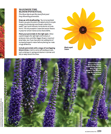 Veronica shot in Birds & Blooms magazine, Feb 2019