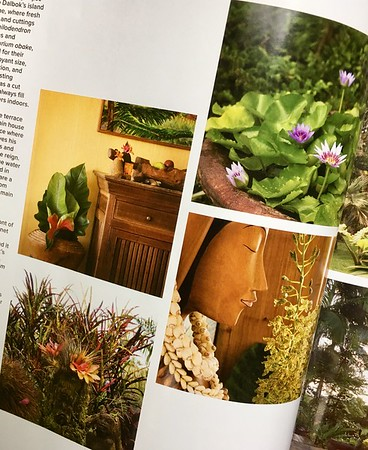 Garden Design magazine, the interior of Hale Mohalu with more beauty of the outdoors
