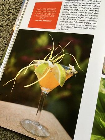 Garden Design magazine story on Hale Mohalu, it's cocktail hour on the lani
