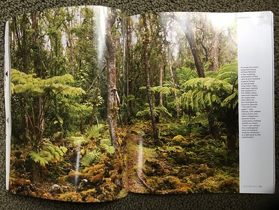 Garden Design magazine 2 page spread of Hale Mohalu on the Big Island of Hawaii