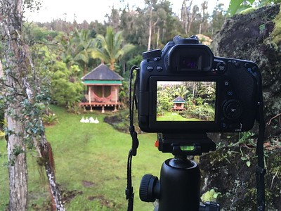 While on a shoot at Hale Mohalu in Pahoa Hawaii