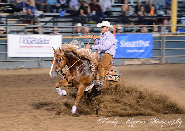 Magnificent 7 stock horse competition - Western States Horse Expo