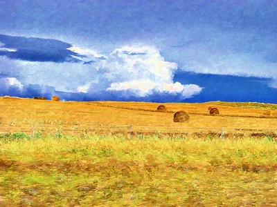 Prairie with Hay Matisse