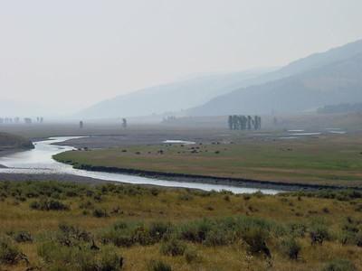Lamar Valley - Yellowstone