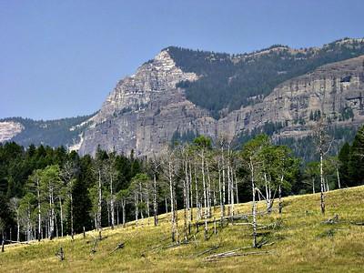 Shoshone Nat Park - Wyoming