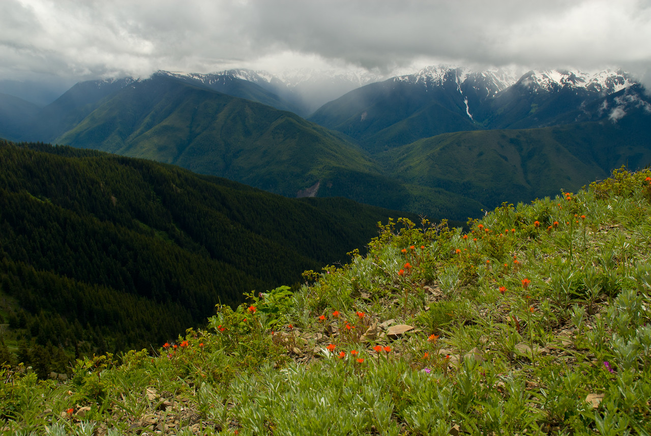 Elwha River valley from Obstruction Point, Olympic National Park, Washington.