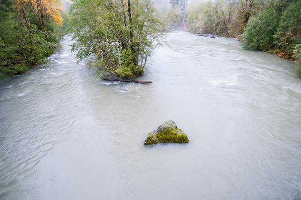 Elwha River in Flood, December 2010, Olympic National Park, Washington.