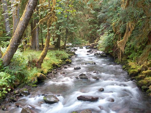 Lillian River, Elwha Watershed, Olympic National Park, Washington.
