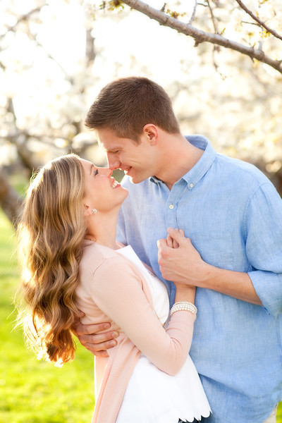 Josh and Emily's Engagements