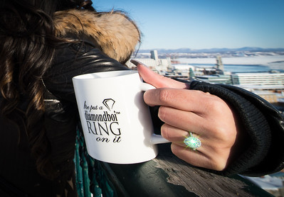 wedding proposal quebec city january 20th 2018