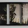 Owl, #5001, Encaustic Mixed Media on wood panels, inset into custom frame , 13x19