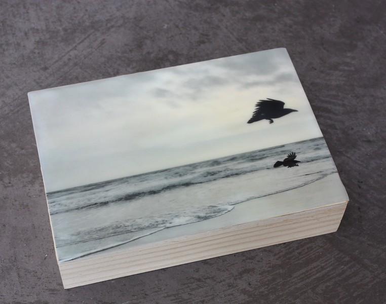 BeachRavens.4x6.Photo/Encaustic/Panel
