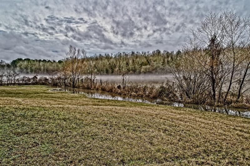 Fog over Lee Creek Slough