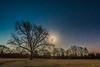 Pecan Tree and January 1,2018 Super Moon