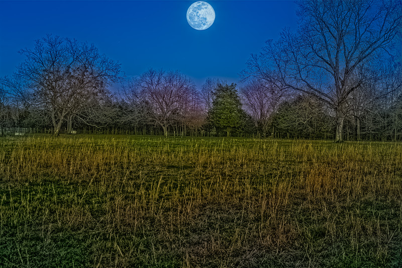 Blue Hour Hunger Moon