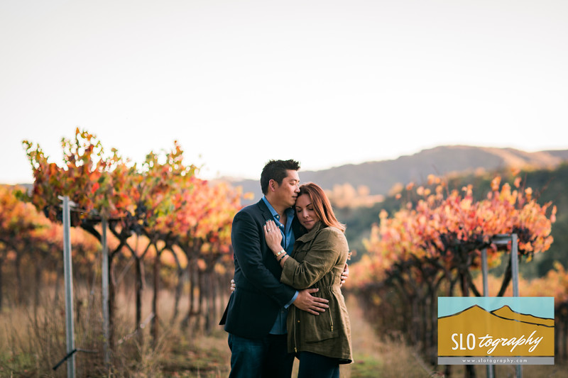 Fall Engagement at HammerSky Vineyards