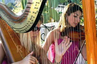 Harp Violin Duo