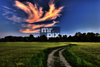 Old Country Road - Landscape photography by Michael Moore