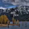 Fall Aspens in Lake Cle Elum - Landscape Photography