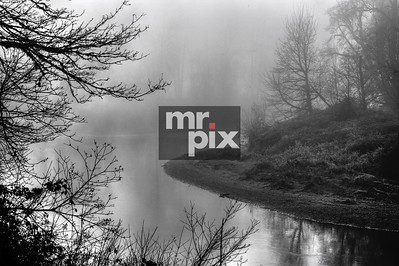 Foggy SnoQ Banks - Landscapes by Michael Moore Photography MrPix.com