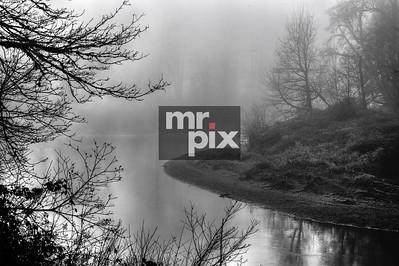 Foggy SnoQ Banks - Landscapes by Michael Moore Photography MrPix.com