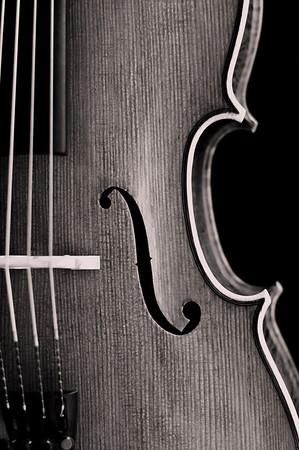 Monochromatic Cello Detail
