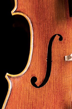 Cello Detail