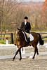 Equestrian Photography in Virginia - Eventing - dressage