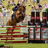 Equestrian Photography in Virginia - Upperville - show jumping - Budweiser Classic