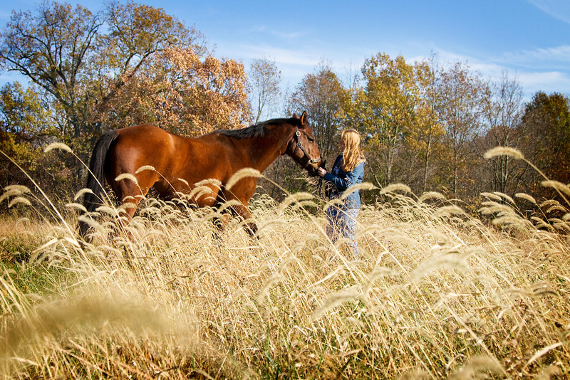 Equestrian Photography in Virginia - portrait