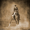 Dressage Moves