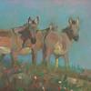 Three Amigos 7x14 available