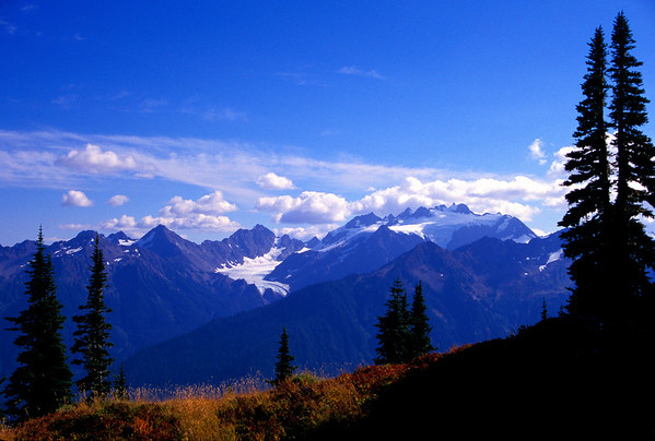 Mt. Olympus, Olympic National Park