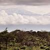 Mt. Kilimanjaro<br>Kenya