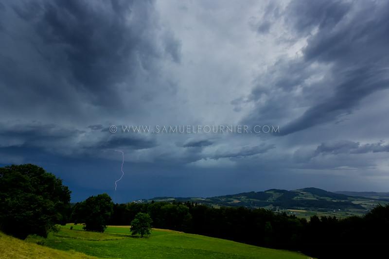Mont-Pélerin - Vaud - Juillet 2014