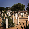 Commonwealth Cemetery, El Alamein, Egypt