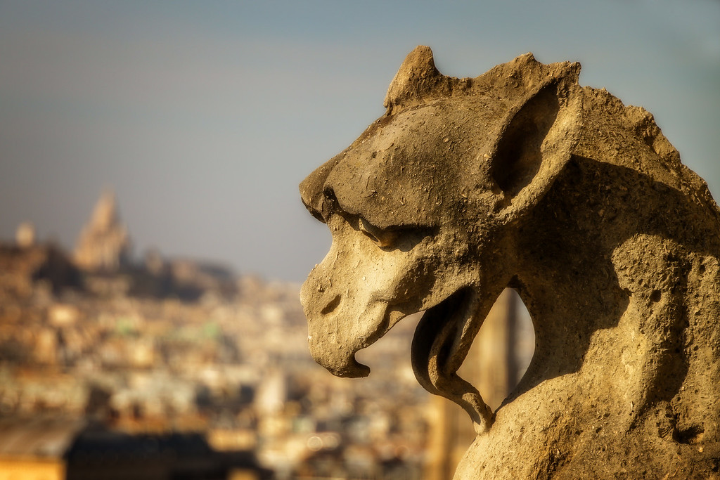 Gargoyle with Sacre Coeur in the Background