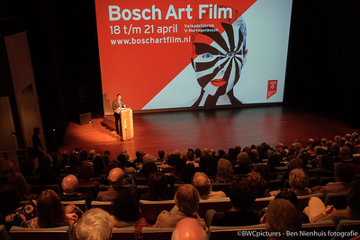Bosch Art Film 2013 (04)