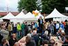 Bosch Parade 2016 (38)