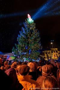 Bosch Winterparadijs 2012 (24)