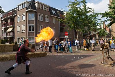 De wereld van Jeroen Bosch 2014 (10)